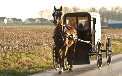 4 Popular Myths About The Amish