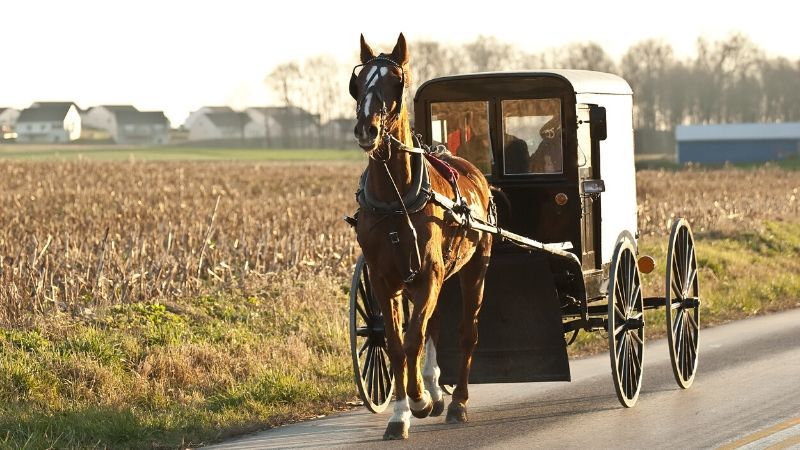 4 Popular Myths About The Amish That Every Person Should Stop Believing