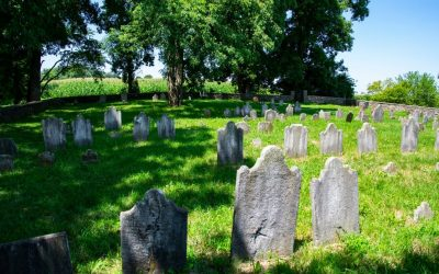 How to Deal with Death as an Amish Child