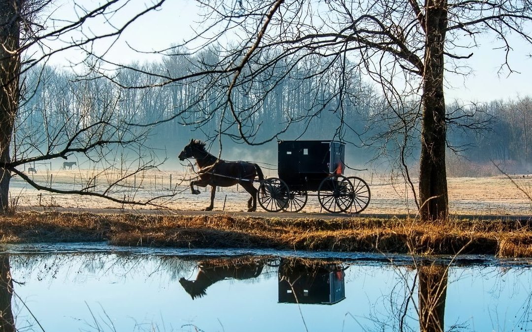 How to Make Your Visit to Amish Country More Rewarding
