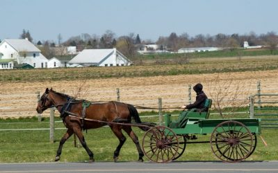 What Really Is Rumspringa in the Amish?